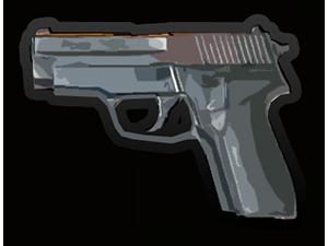 Sig P226 & P229